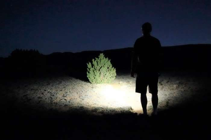 man shining with a flashlight at night