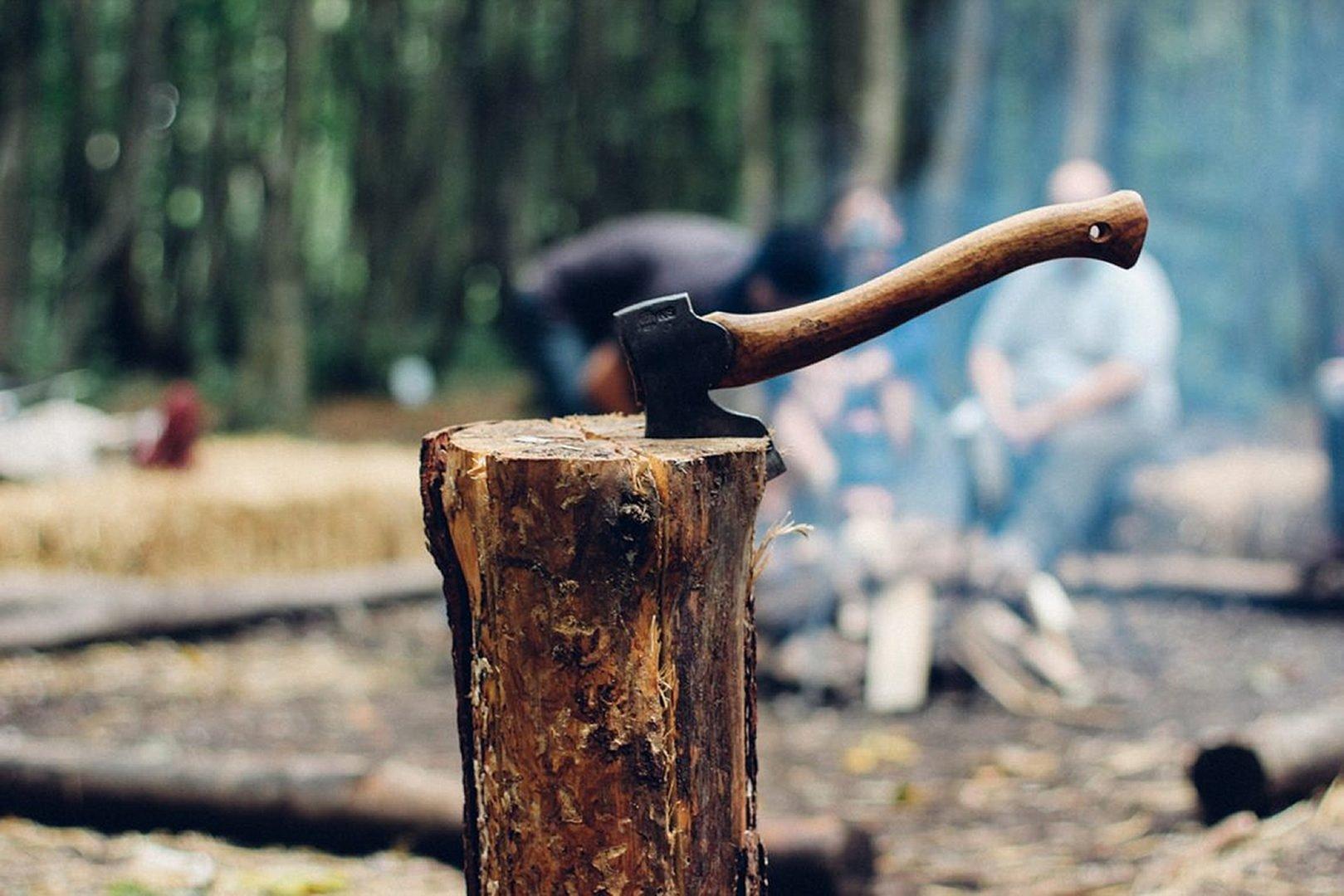 Hatchet in the woods, wooden handle