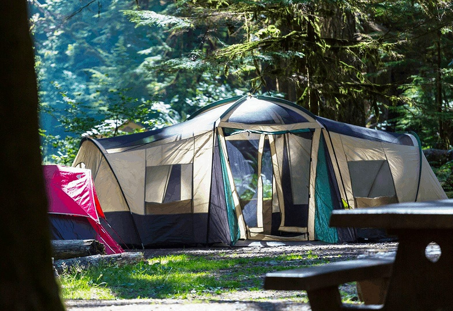 Large 8-person cabin tent in the woods