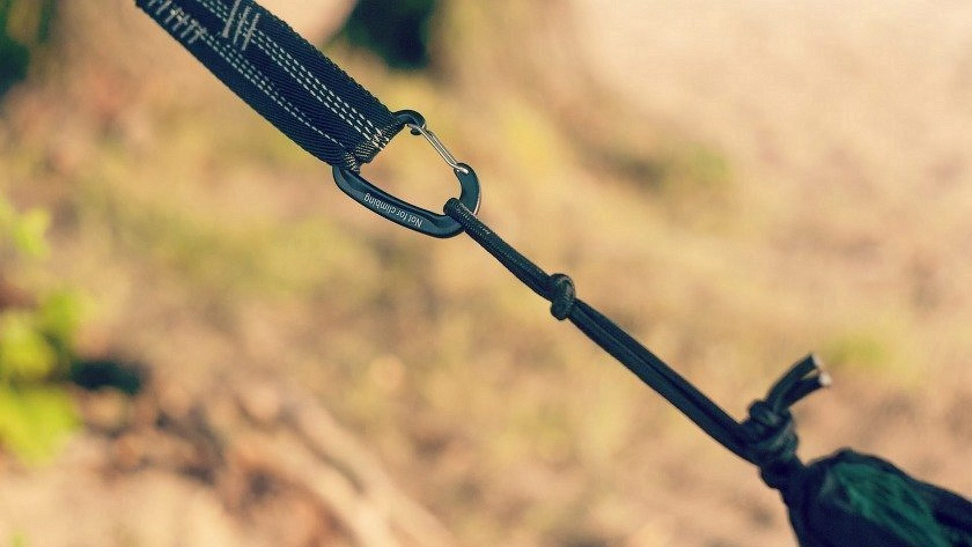 The 8 Best Hammock Straps to Ensure an Entirely Secure Hang