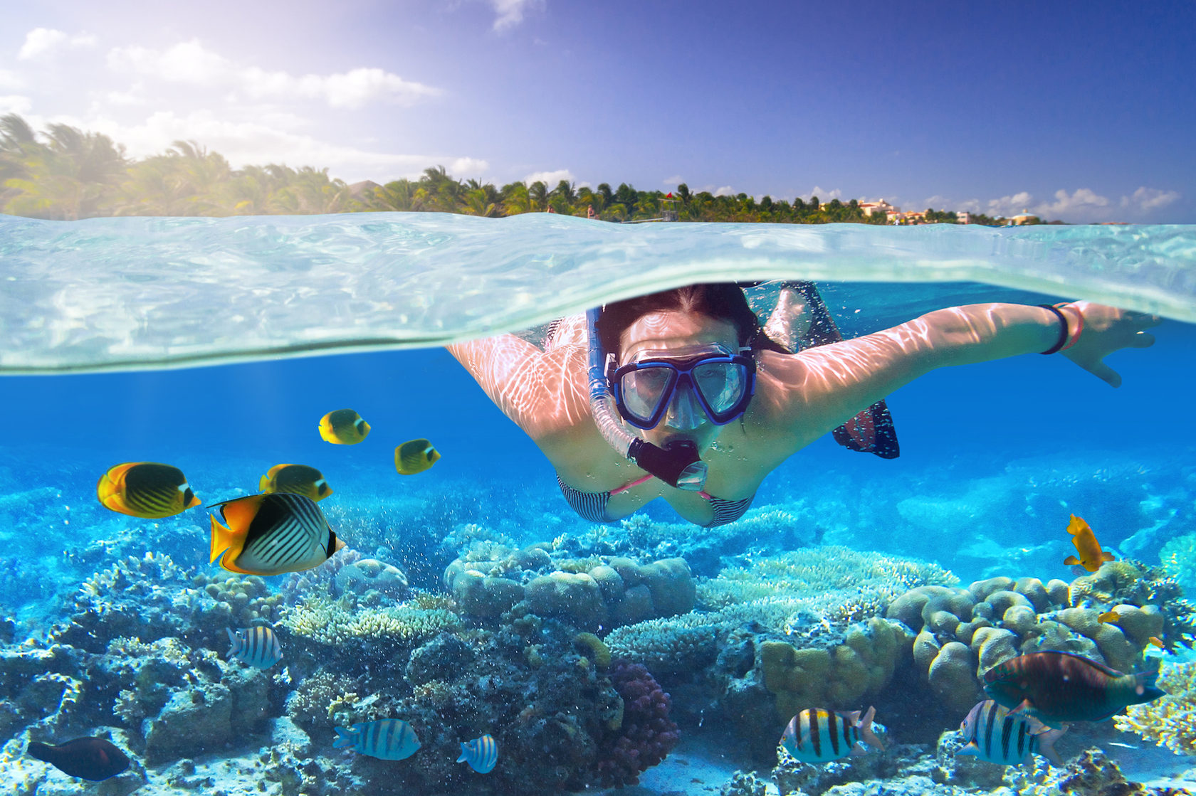Best Scuba Masks Reviews of 2021 – Our TOP 6 picks and Buyer's guide