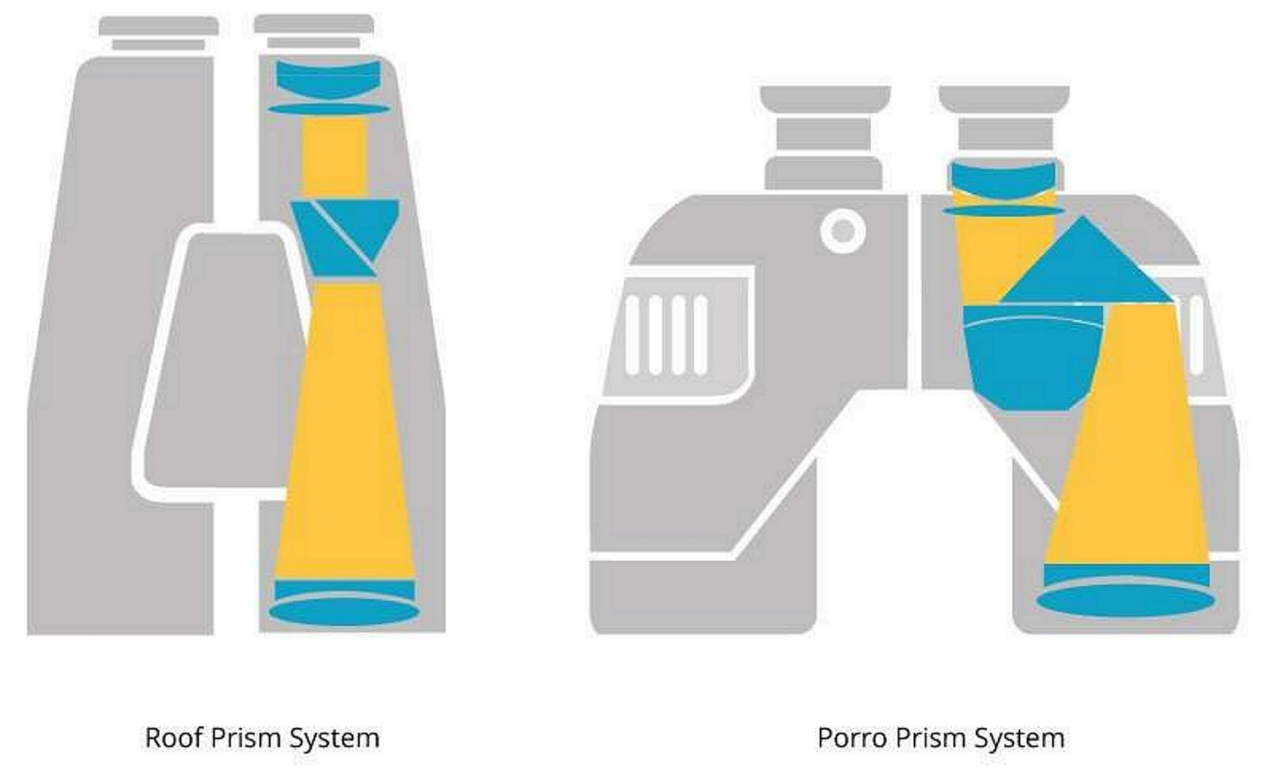 Roof and Porro Prism Binocular Infographics