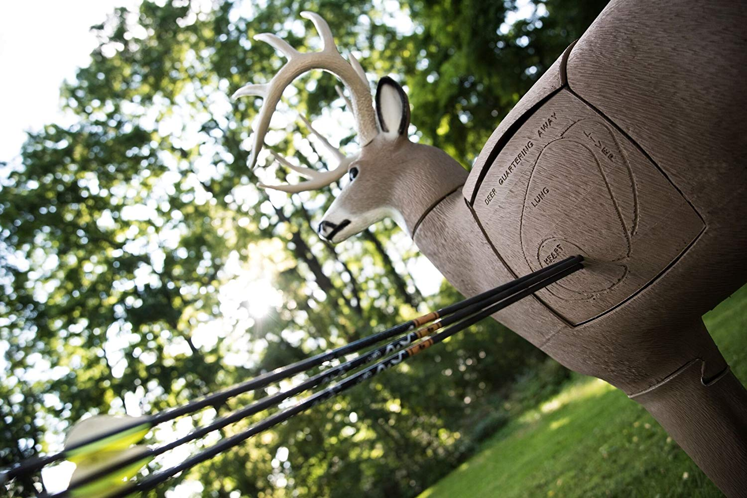 Photo of a deer decoy with arrows. TOP 6 Best Deer Decoys Reviewed and Revealed [+Buyer's Guide]