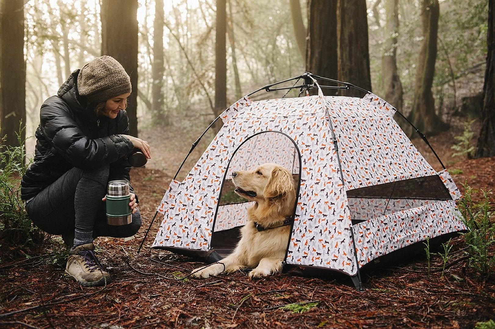 Best Dog Tent of 2021 – Make a Good Buy for a Good Boy