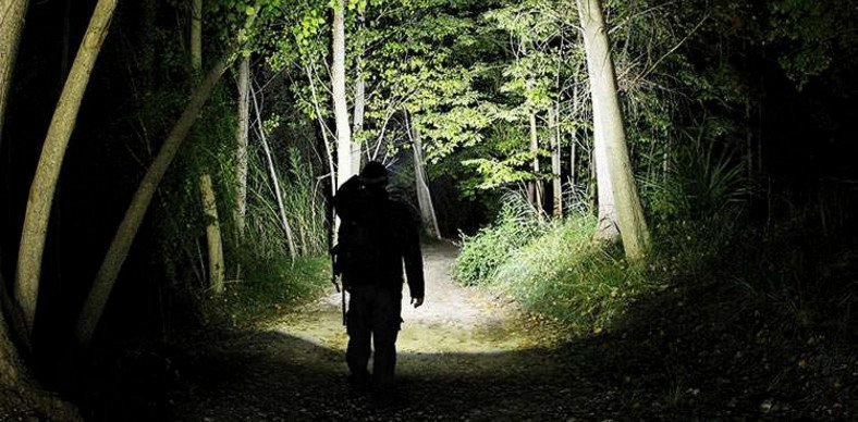 man with a flashlight in the forest