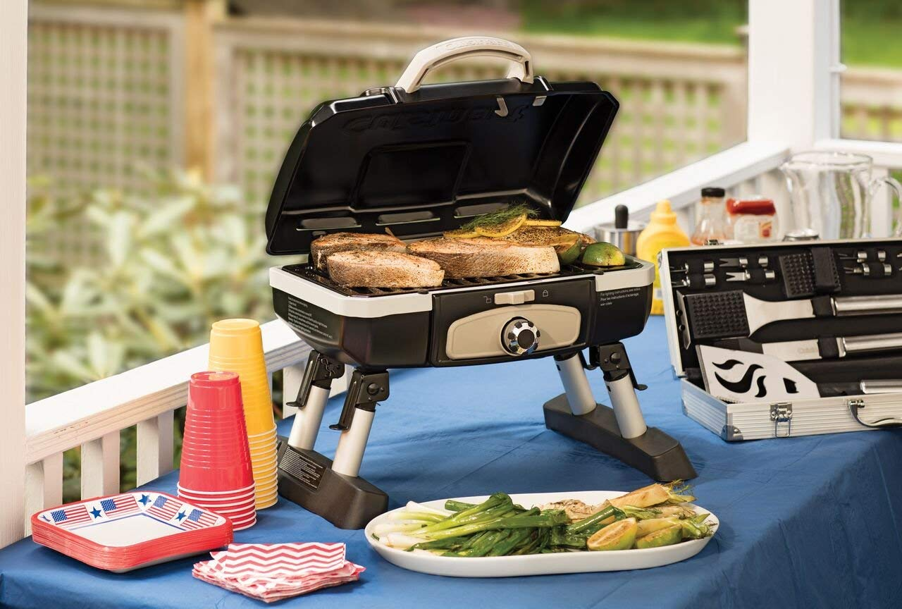 Reviews of Best Small and Portable Gas Grills – TOP Picks of 2021