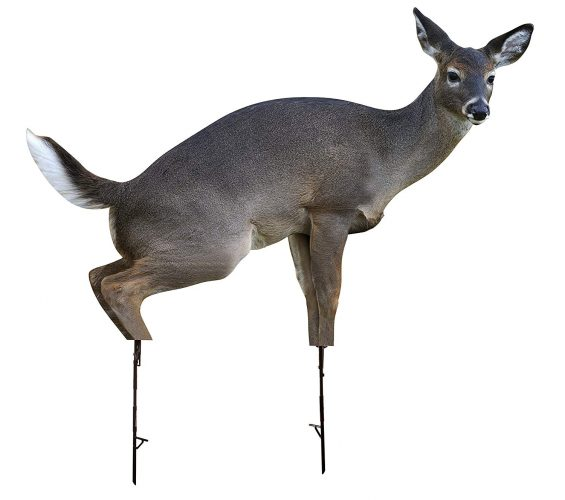 Picture of another montana deer decoy.