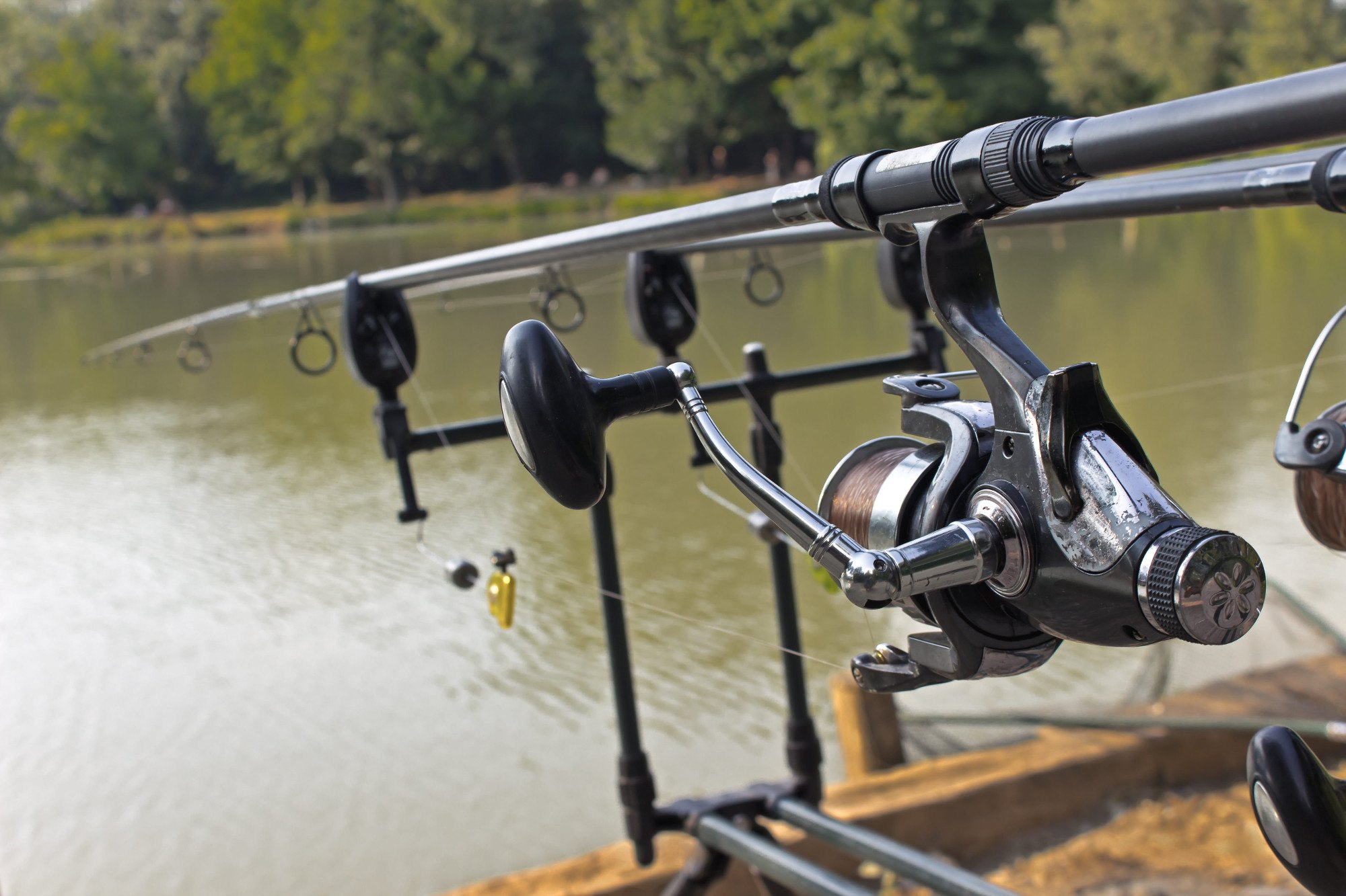 Best Saltwater Spinning Reels – Reviews
