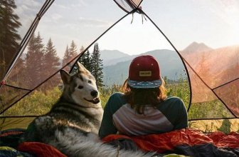 Top Tents for Camping with a Dog: Guide to Making a Tent Dog-Friendly